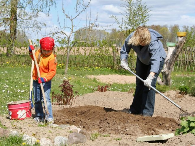 Около 200 жителей Самары занимается в Школе садоводов.